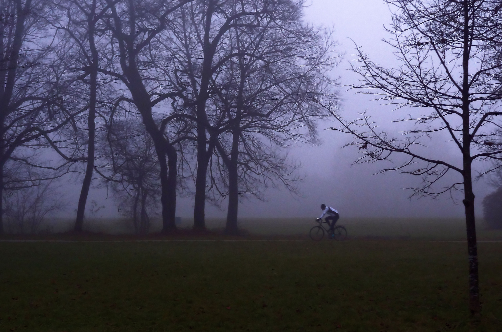 ob nebel oder nicht: bewegung muss sein!