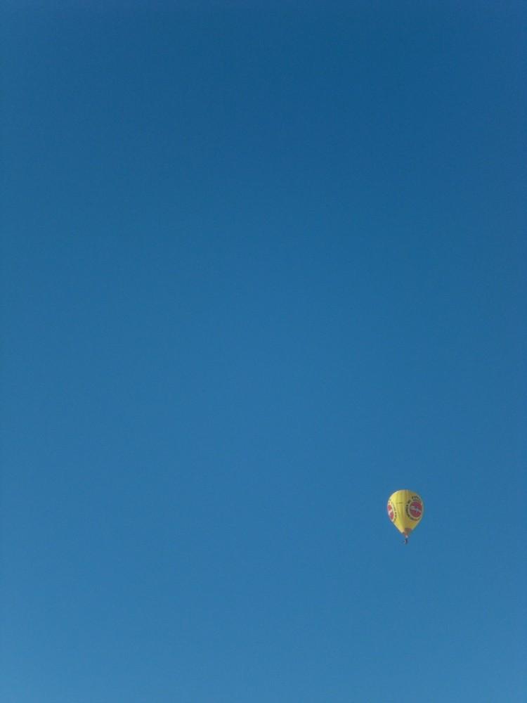 Oben am Himmel da lässt es sich leben...