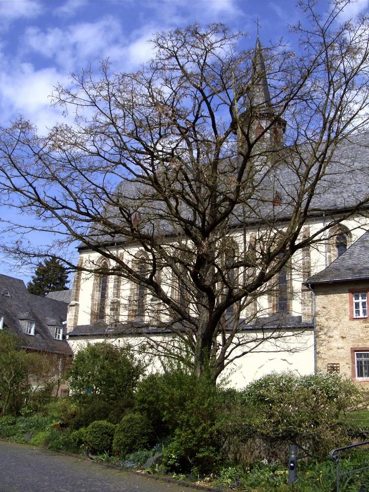 Oberbiel (4)
