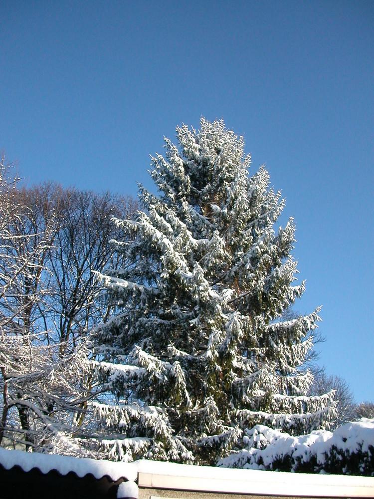 Oberhausen im Schnee
