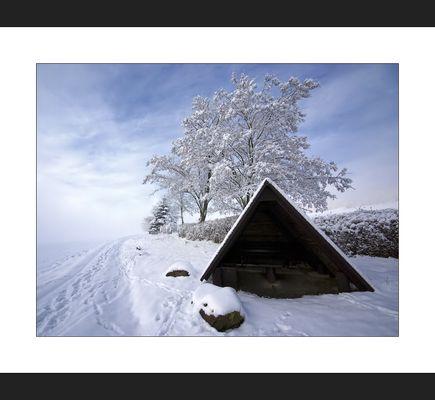 Oberlausitzer Winter