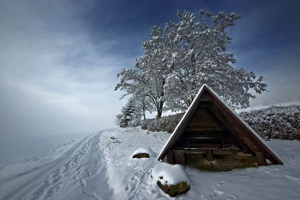 Oberlausitzer Winter II