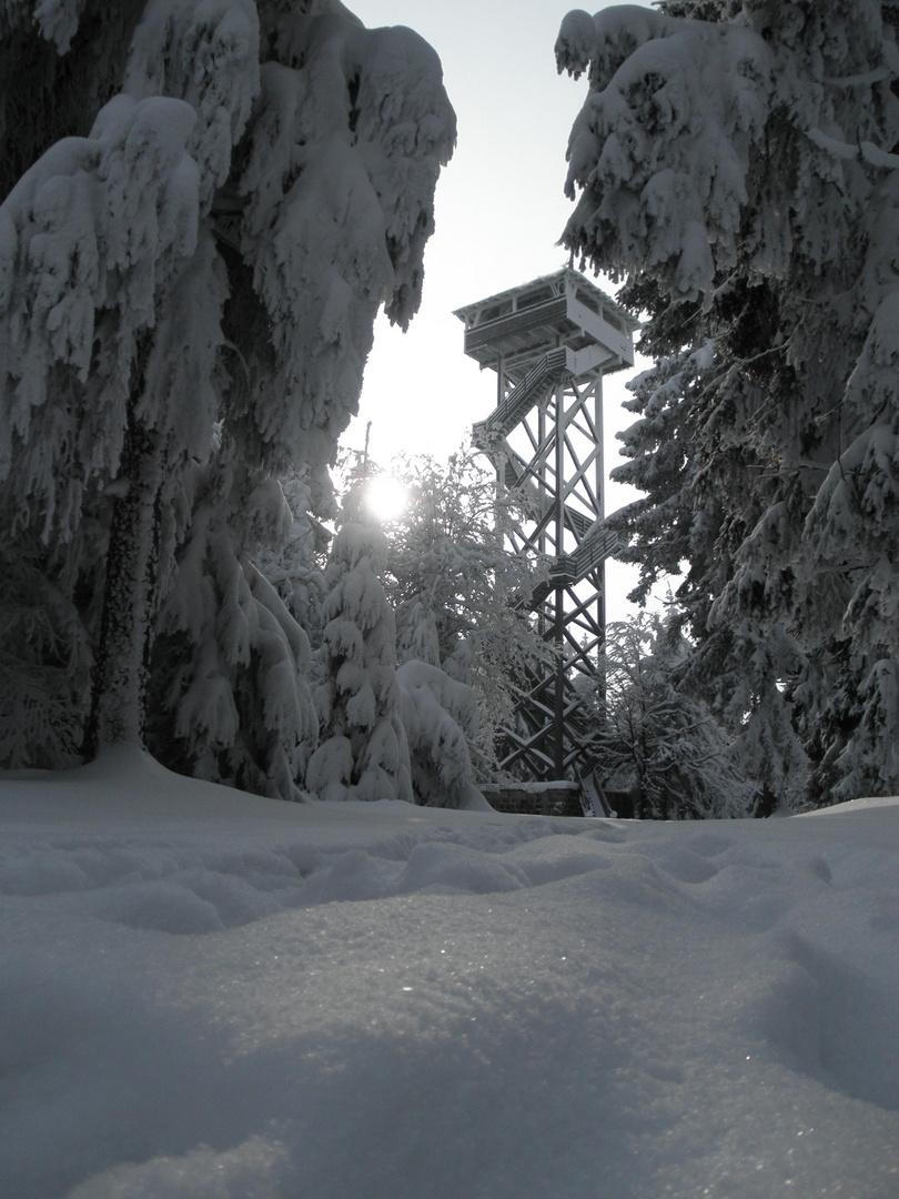 Oberpfalzturm im Naturpark Steinwald