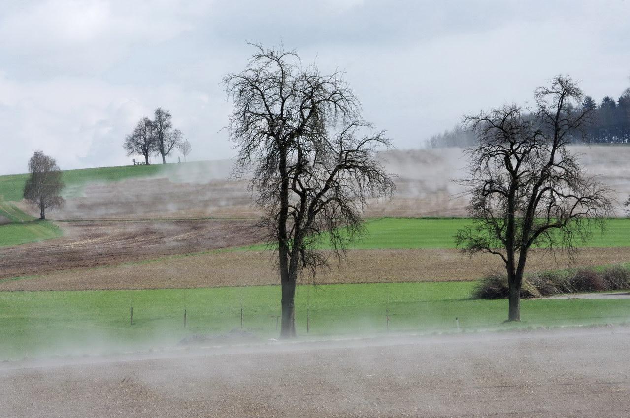 Oberraderberg im Nebel