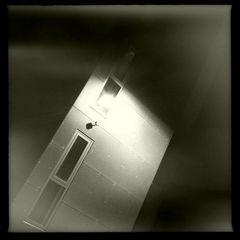 Observed Windows... Erkenne Dich... bevor es Andre machen....