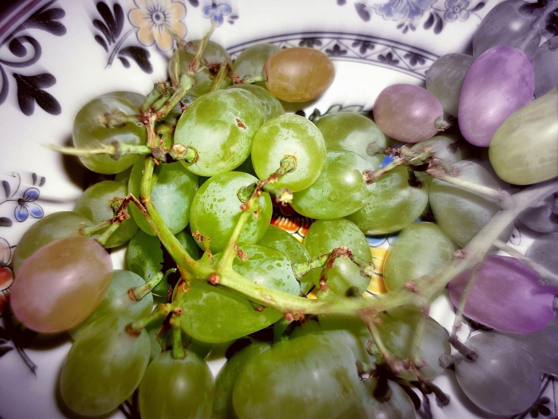 Obst-Teller