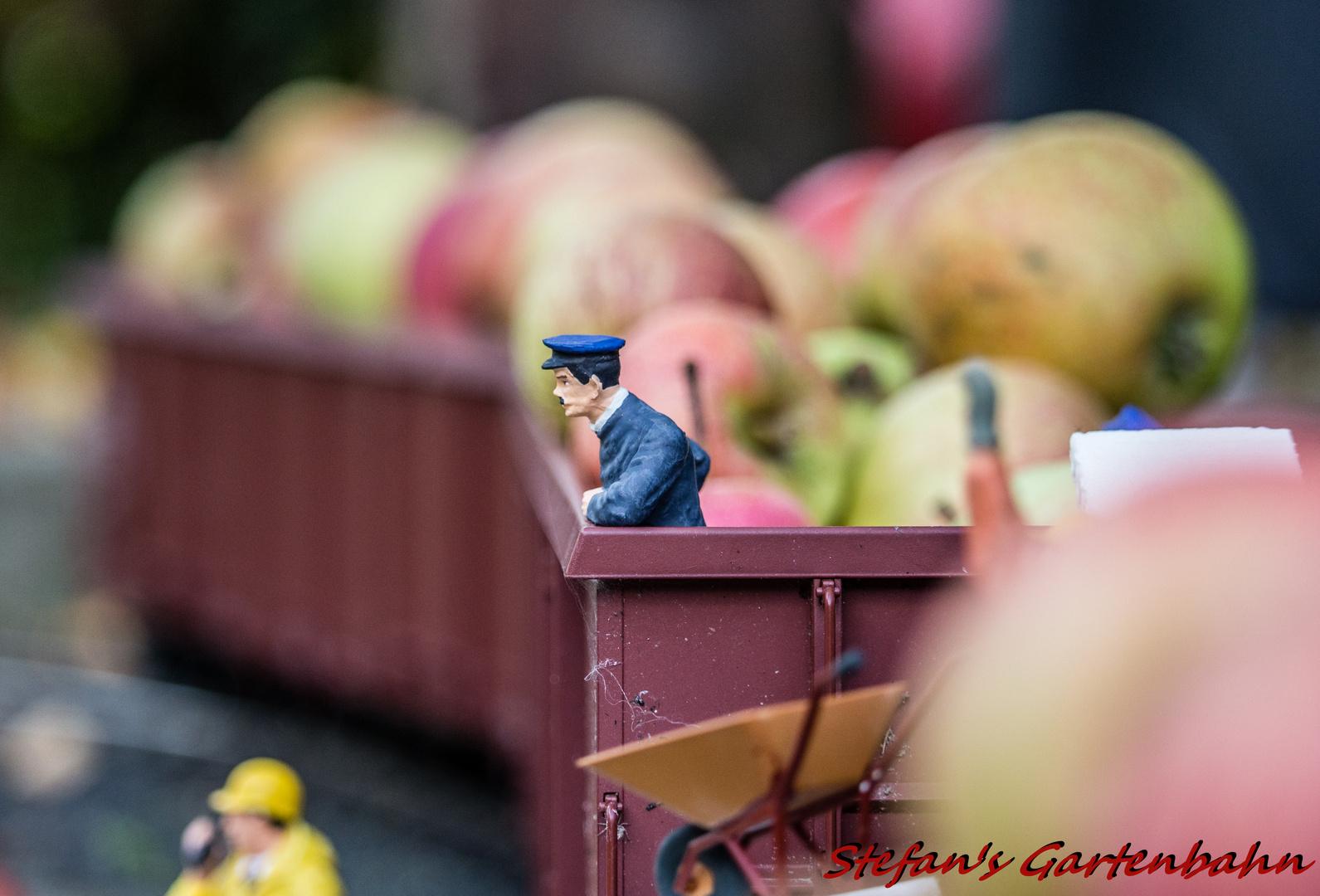 Obsttransport per Bahn