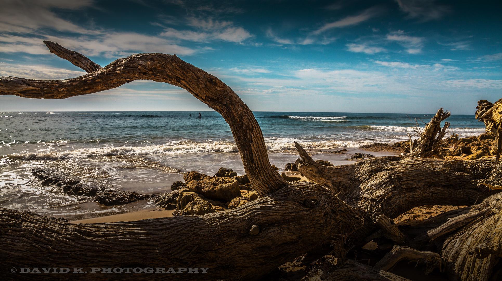 Ocean Grove , Australia