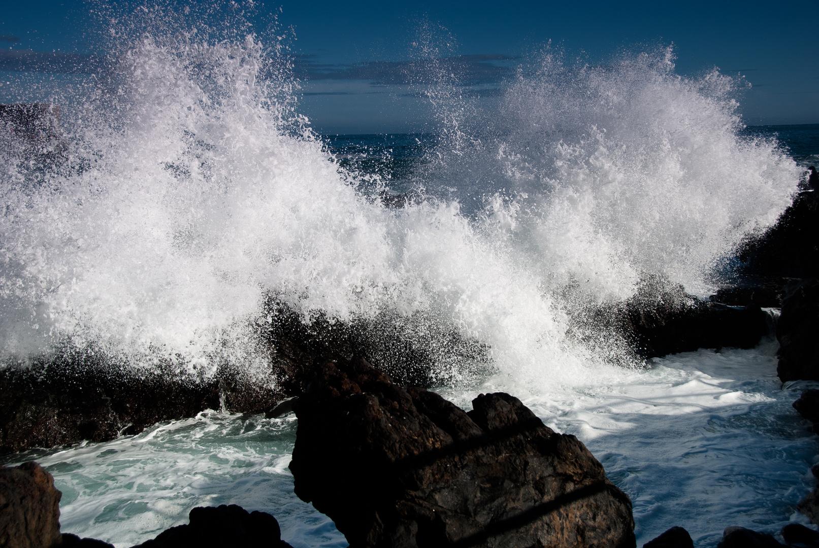 ocean kräfte