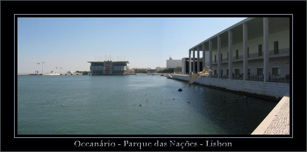 Oceanario of Lisbon - Man Meets Nature
