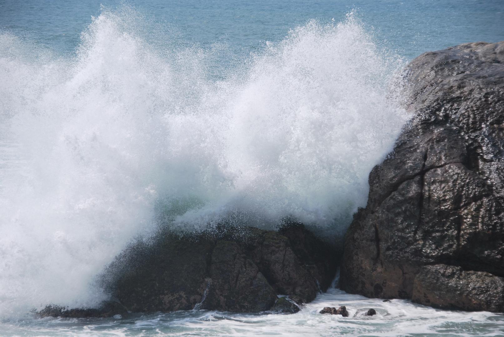 Oceankräfte