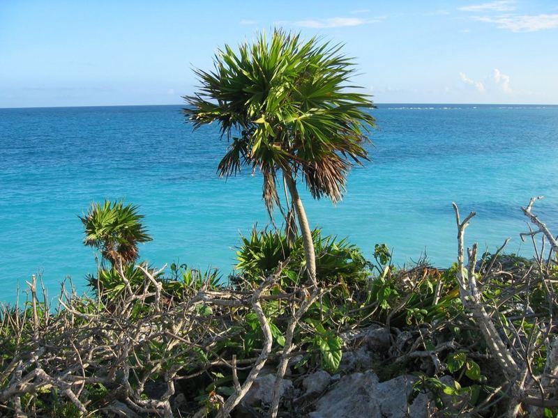 """Oceanview"" in Tulum - Yucatan"