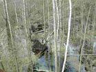 Ochsenmoor am Dümmer