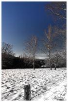 Ode an den Winter