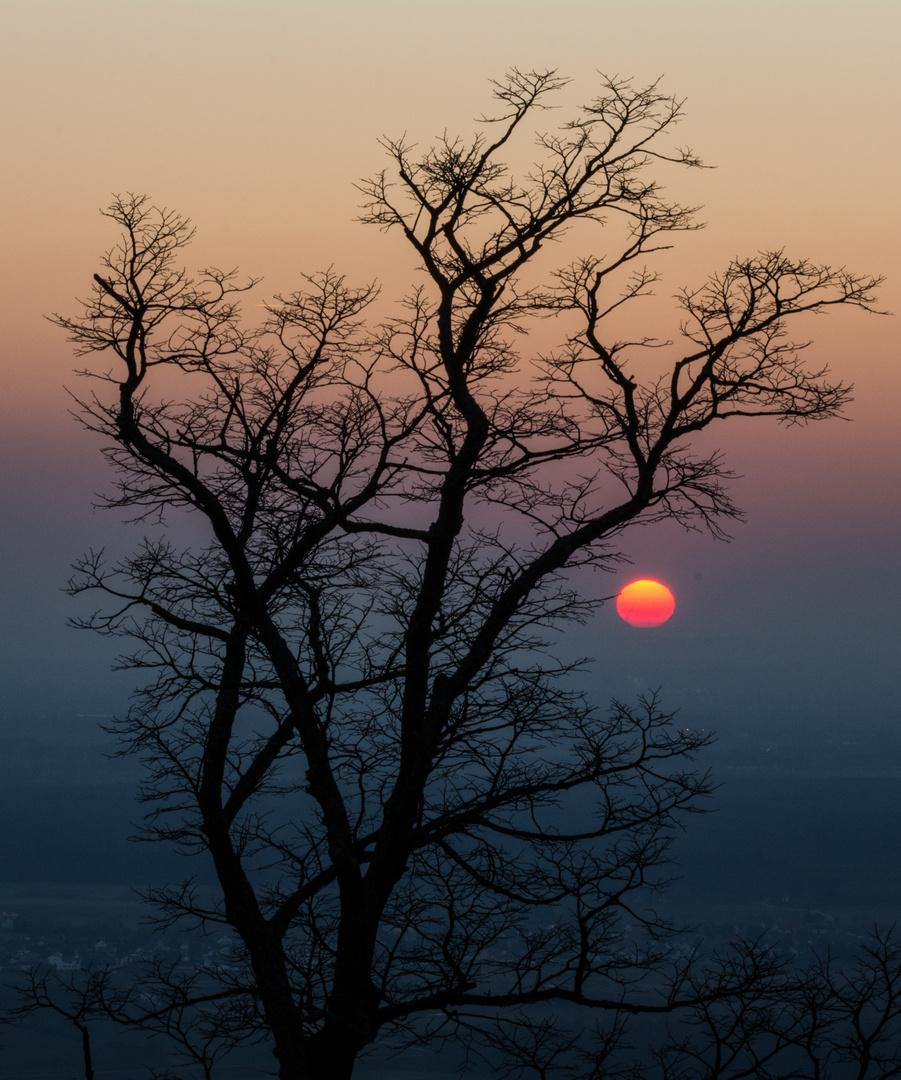 Odenwälder Sunset...