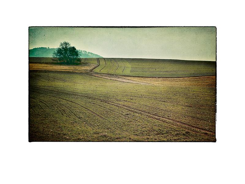 Odenwald # 03