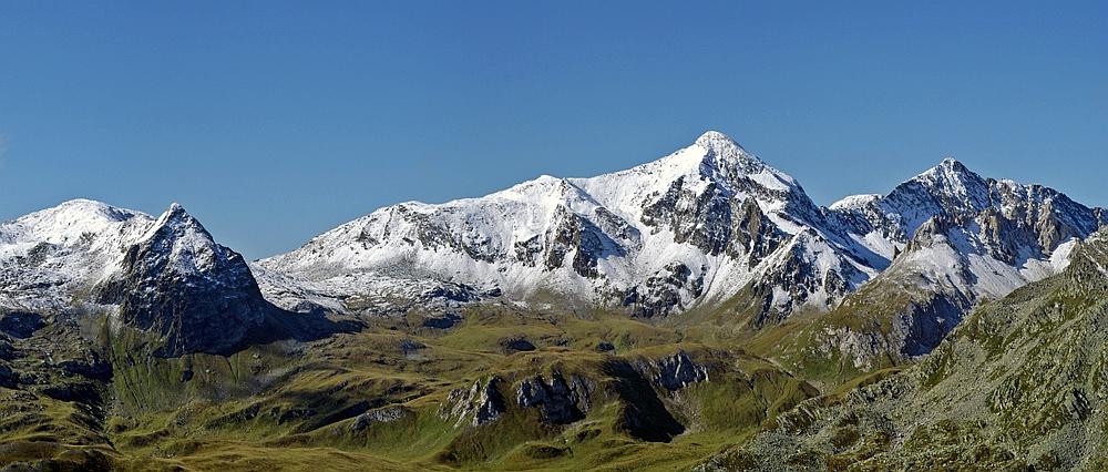 Öde Alpenschönheit !