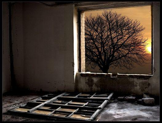 Öffne dein altes Fenster