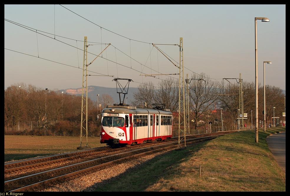 OEG 96 zwischen Mannheim Seckenheim und Neuostheim