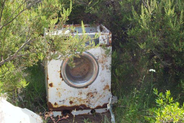 Ökologisches Waschen