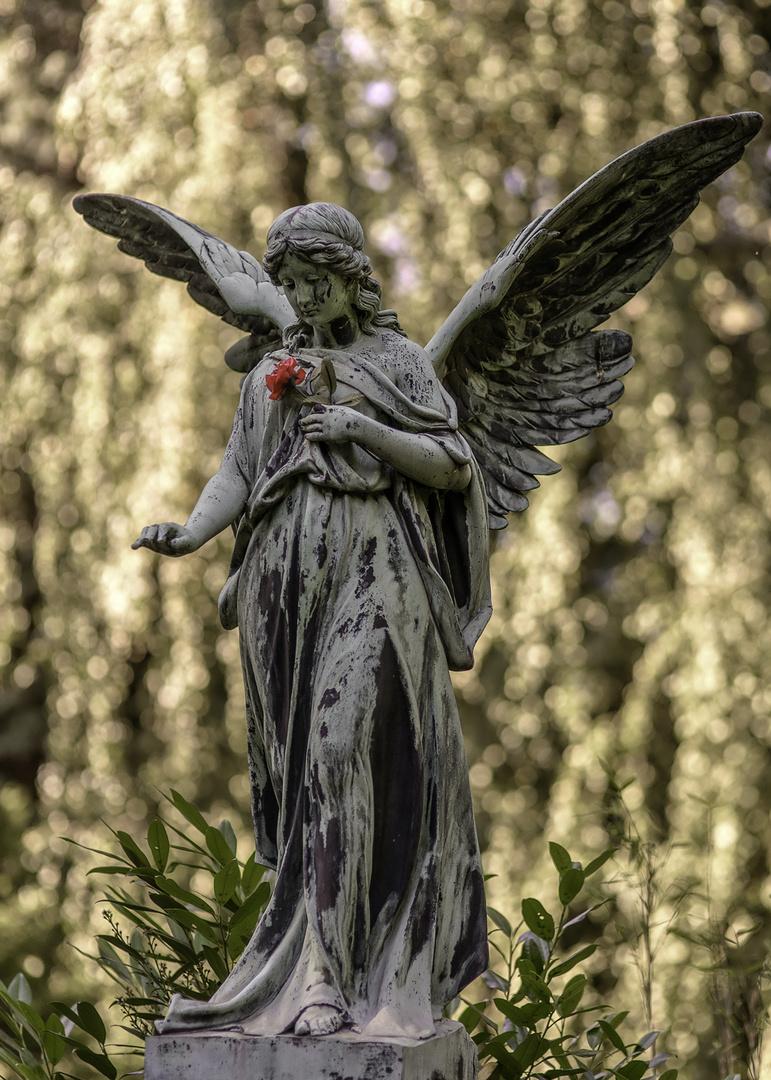 Ohlsdorfer Friedhof Hamburg