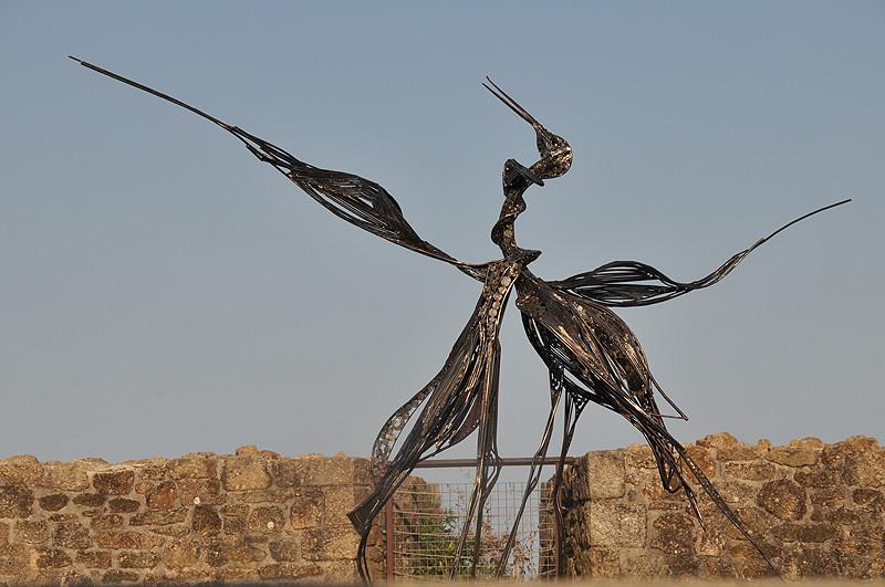 oiseau d'acier