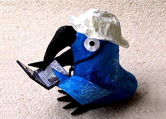 oiseau informaticien