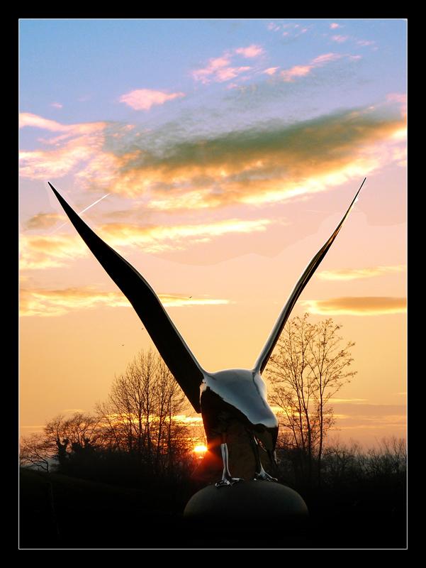 Oiseau né du métal et du feu