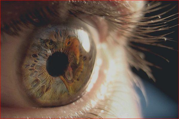 ojo de Prometeo