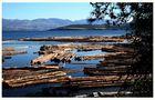 Okanagan Valley Holzlager