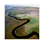 [ Okavango Delta ]