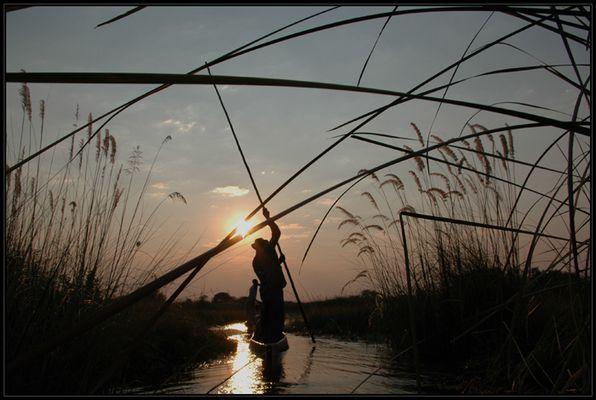 okavango delta - einfach geniessen...