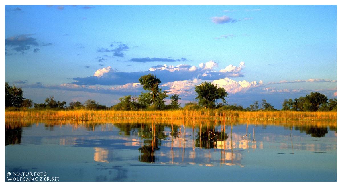 ---- Okavango-Delta Nr.2 ---- ( Botswana, südliches Afrika )