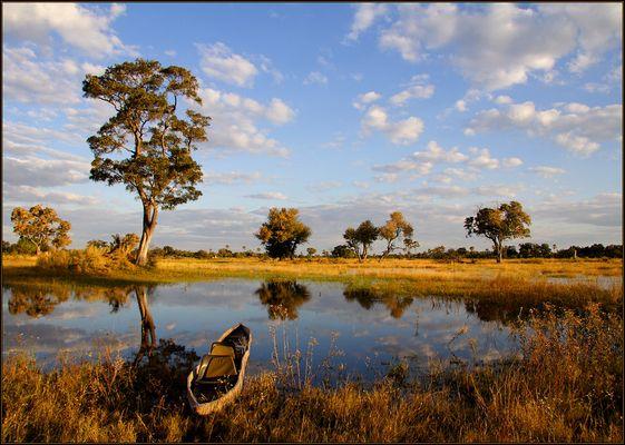 Okavango-Delta (Reload)
