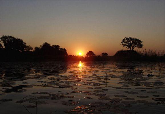 okavangodelta. sonnenuntergang vor unserer insel