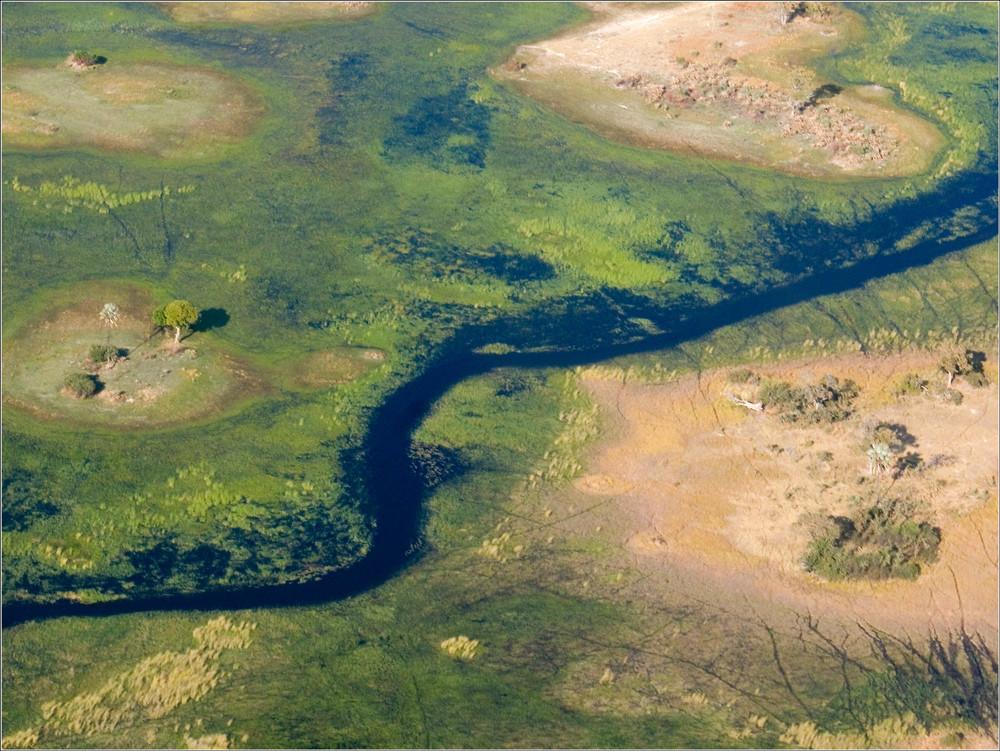 Okawango-Delta