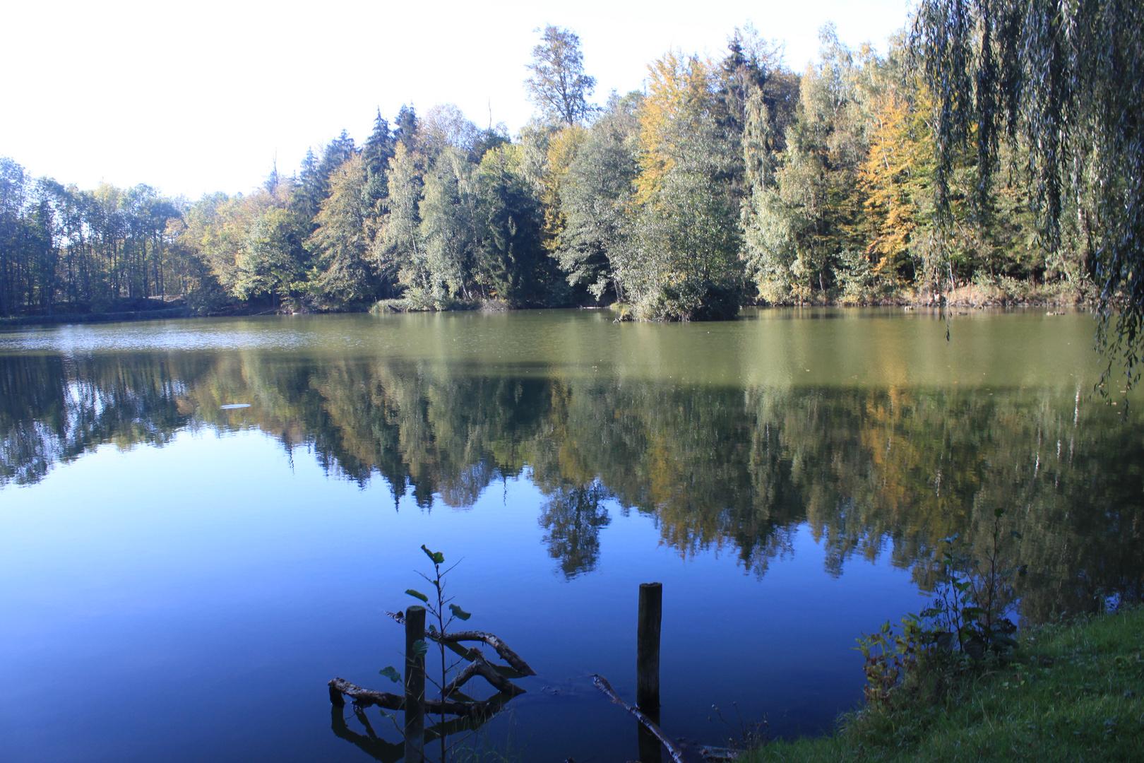 Oktober am Veronikasee bei Veltheim / Ohe