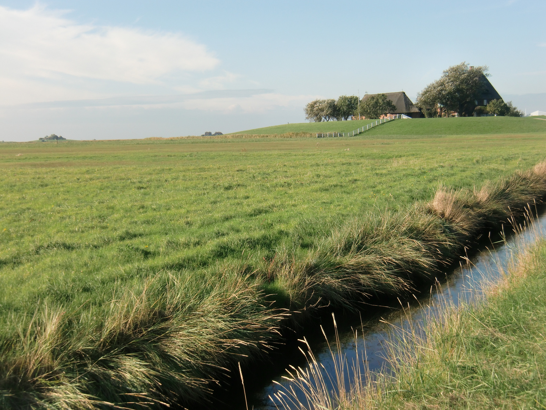 Oktober auf der Hallig Hooge (14) - 7485