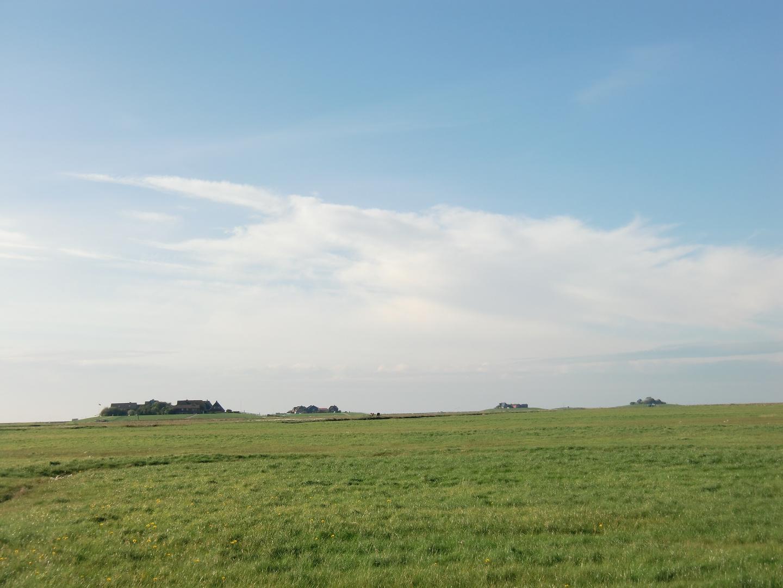 Oktober auf der Hallig Hooge (15) - 7489