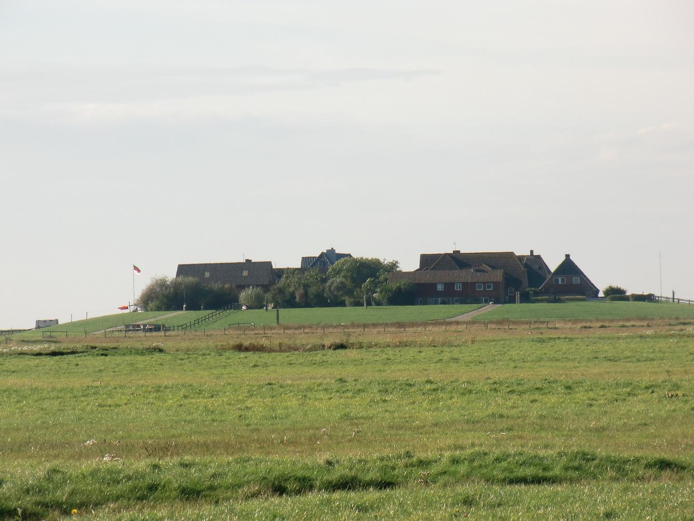 Oktober auf der Hallig Hooge (16) - 7490