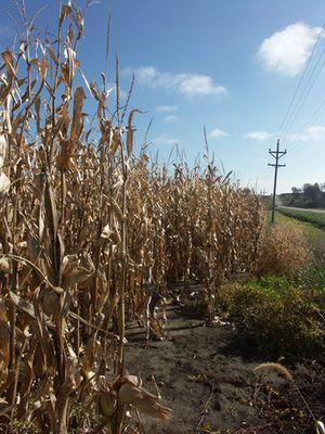 Oktober in Iowa