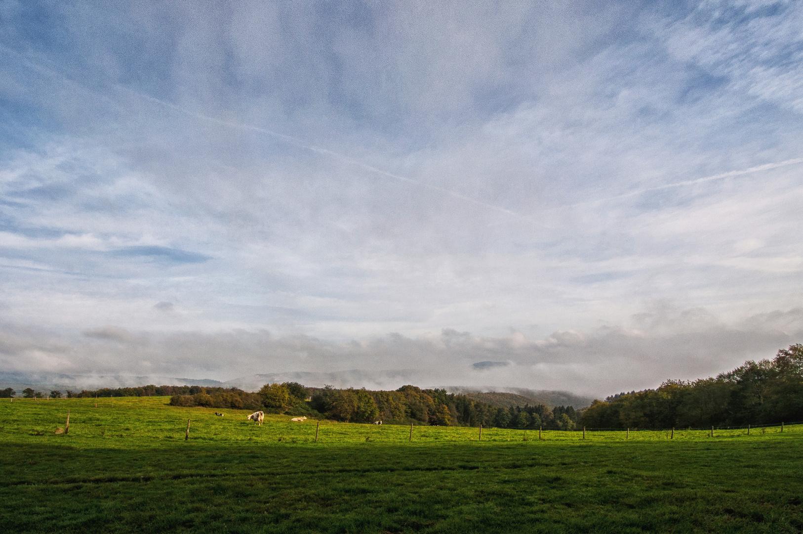 Oktober-Morgen im Hunsrück