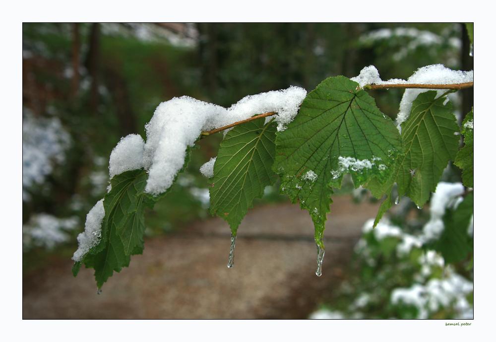 Oktober-Winter 15