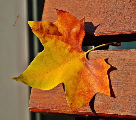 Oktoberablage erledigt