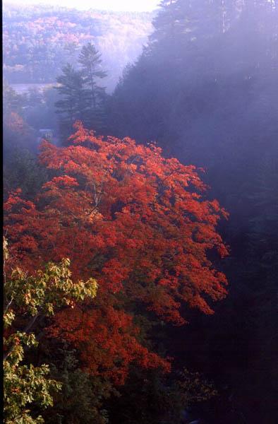 Oktobermorgen in Vermont