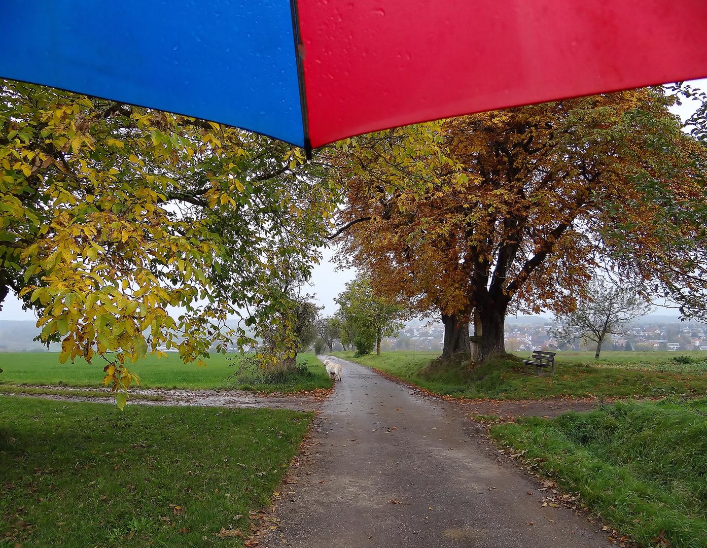 Oktobersonntag unterm Schirm
