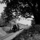 Ol 49 69 mit Zug 77324 zwischen Steszew und Szreniawa