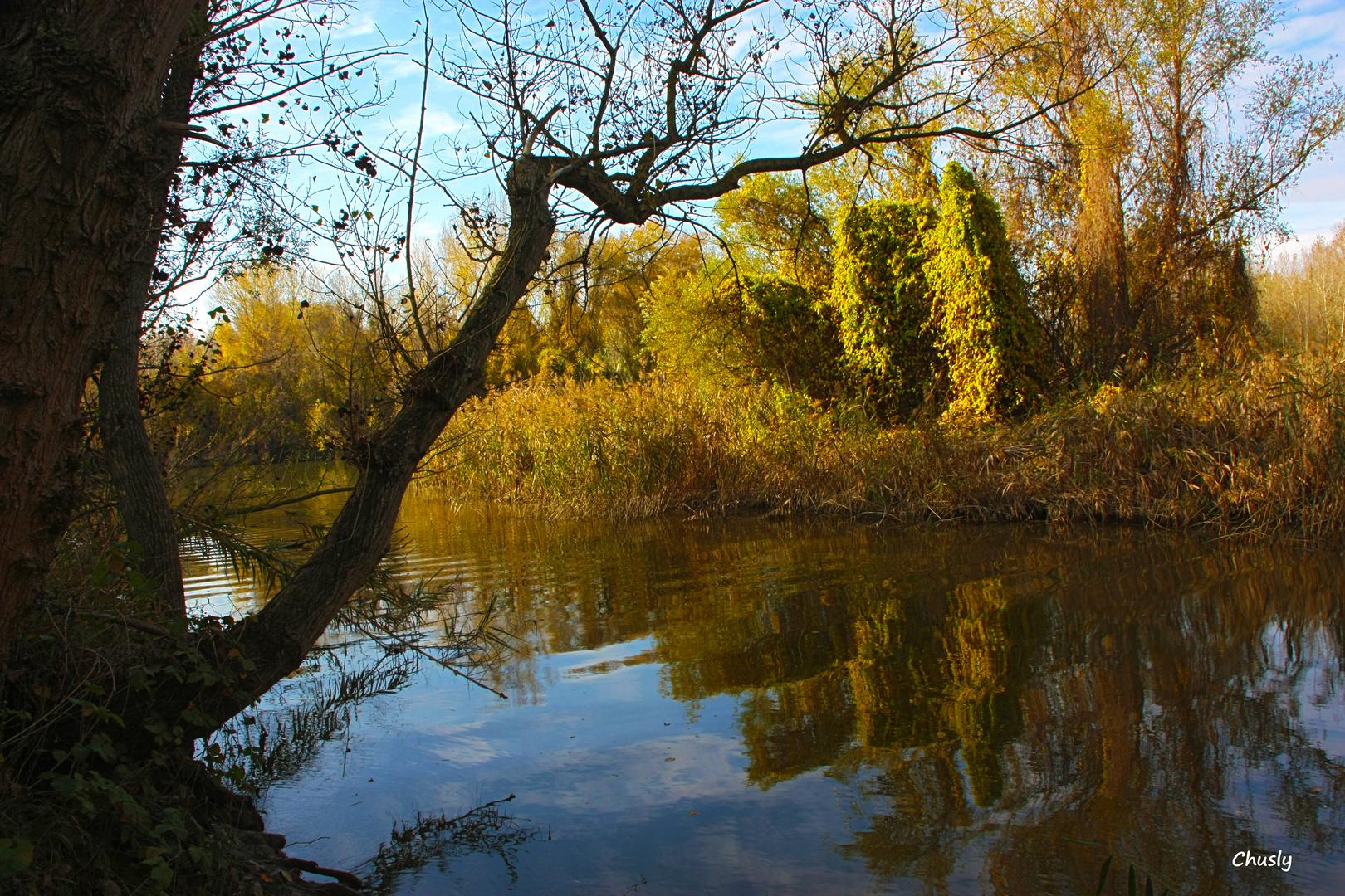 Olas y otoño
