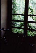 Old Bike in Paris
