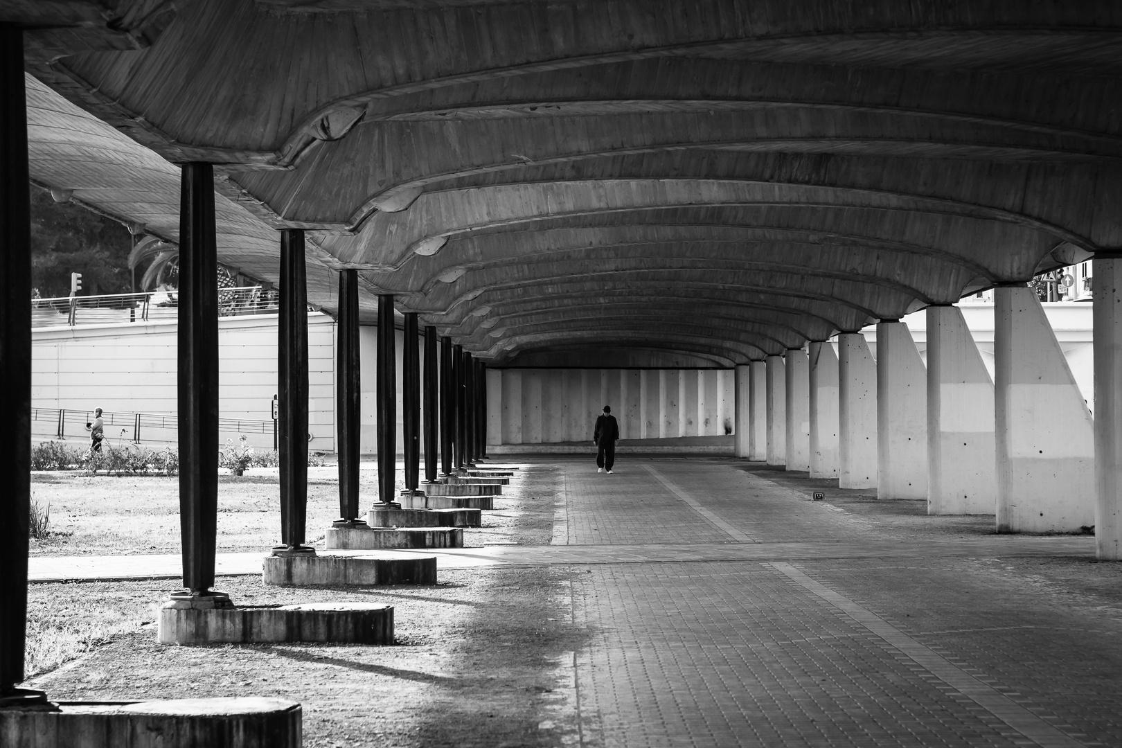 old Calatrava bridge